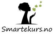 SmarteKurs.no